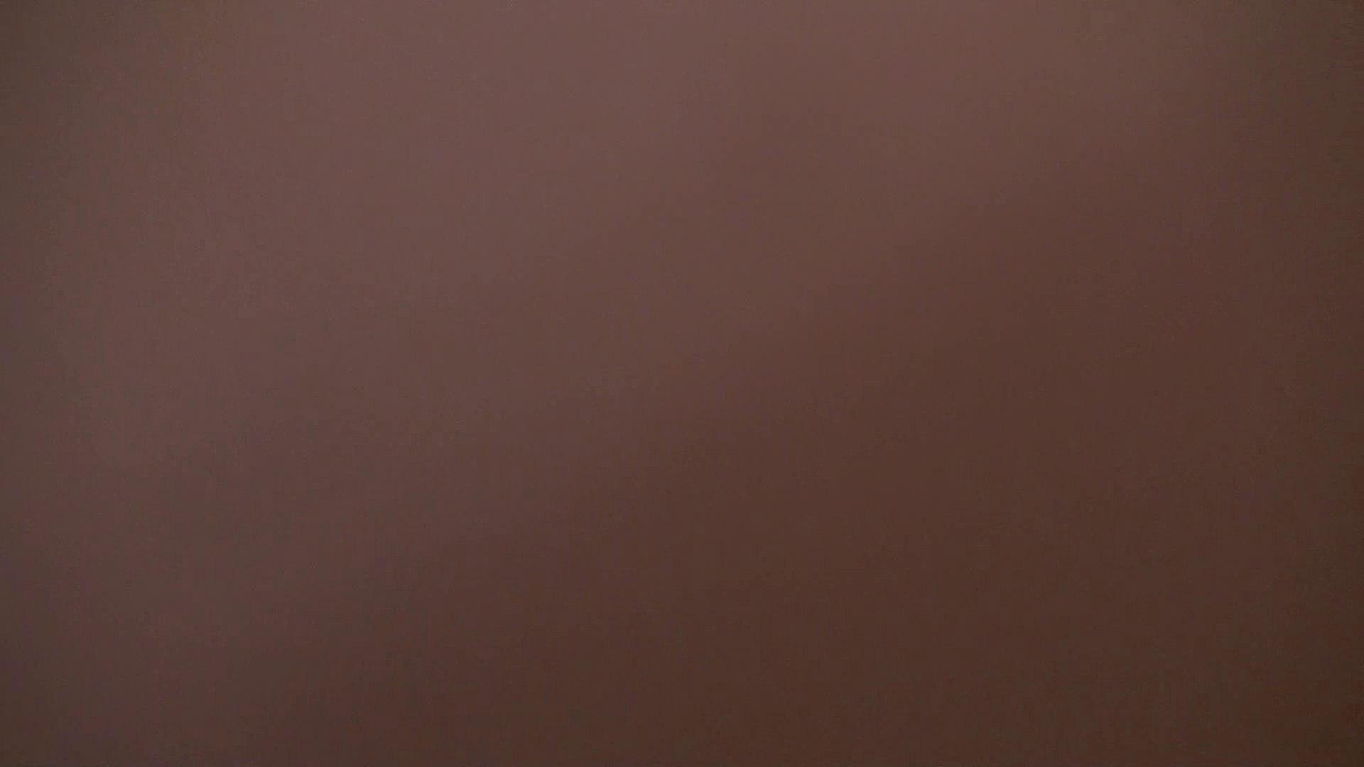 エッチ 熟女|洗面所内潜入!同級生が同級生を盗撮! vol.04|怪盗ジョーカー