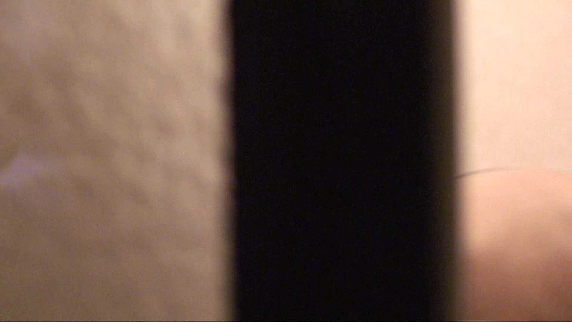 エッチ 熟女|vol.01必見!白肌嬢の乳首が丸見え。極上美人のすっぴん顔をハイビジョンで!|怪盗ジョーカー