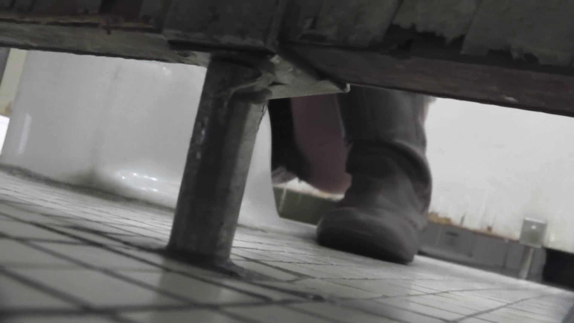 エッチ 熟女|洗面所特攻隊 vol.003 洗面所特攻隊さん本気を出しました。|怪盗ジョーカー