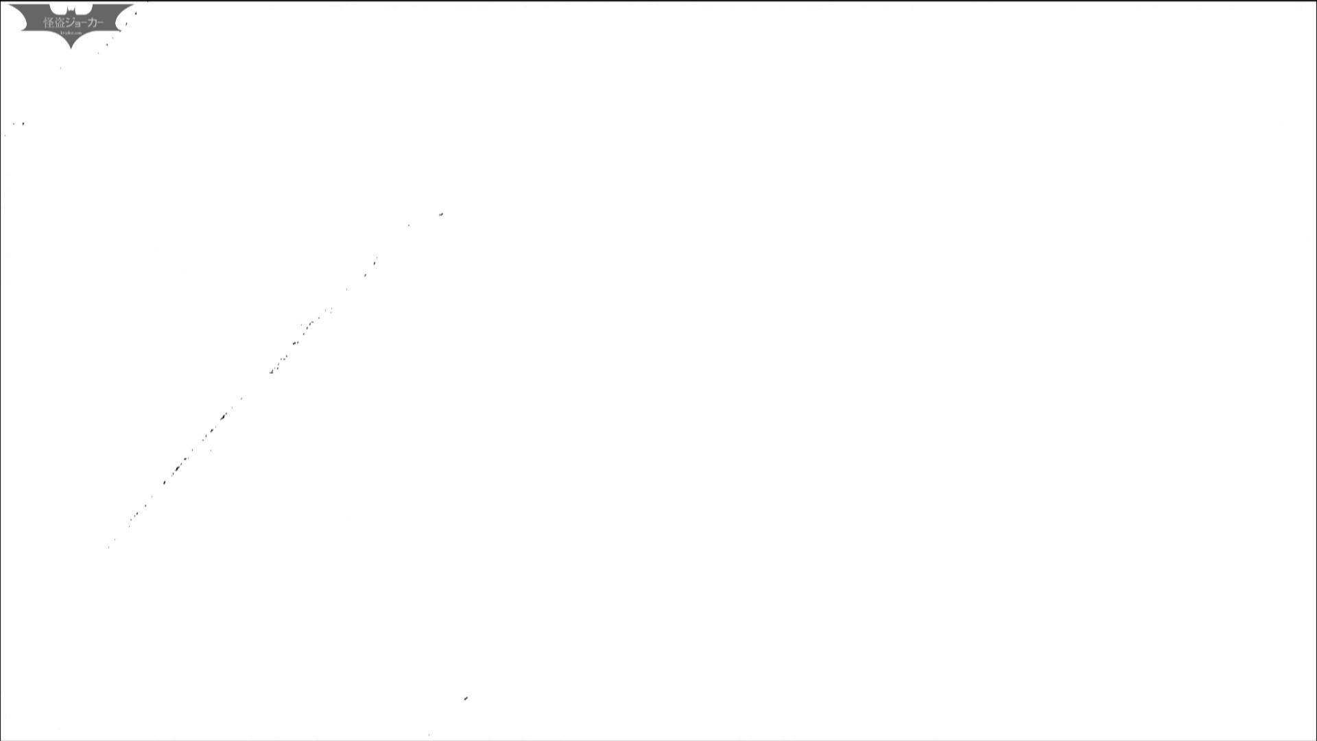 エッチ 熟女|洗面所特攻隊 vol.72 番外編 「最後の女性」の特集 番外編|怪盗ジョーカー