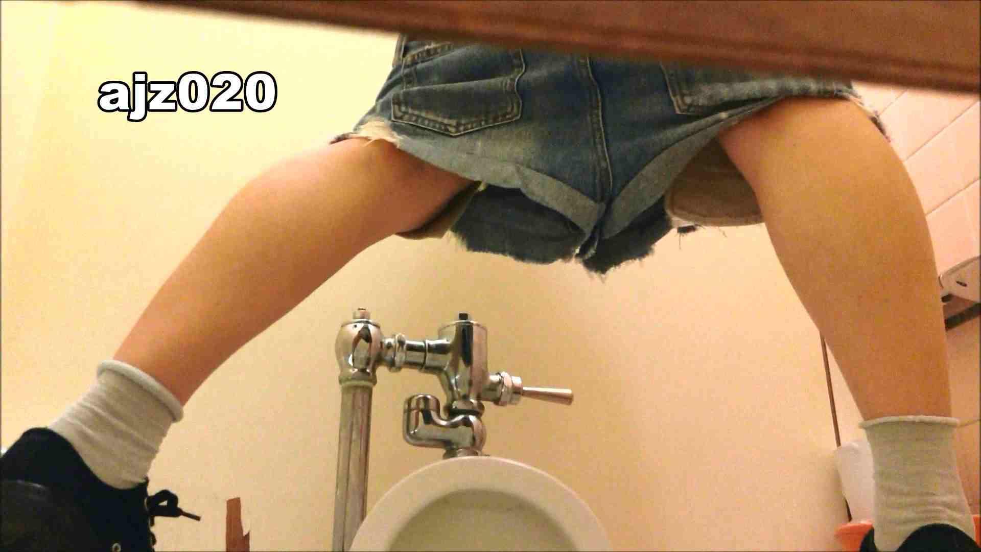 某有名大学女性洗面所 vol.20 洗面所突入  79pic 8