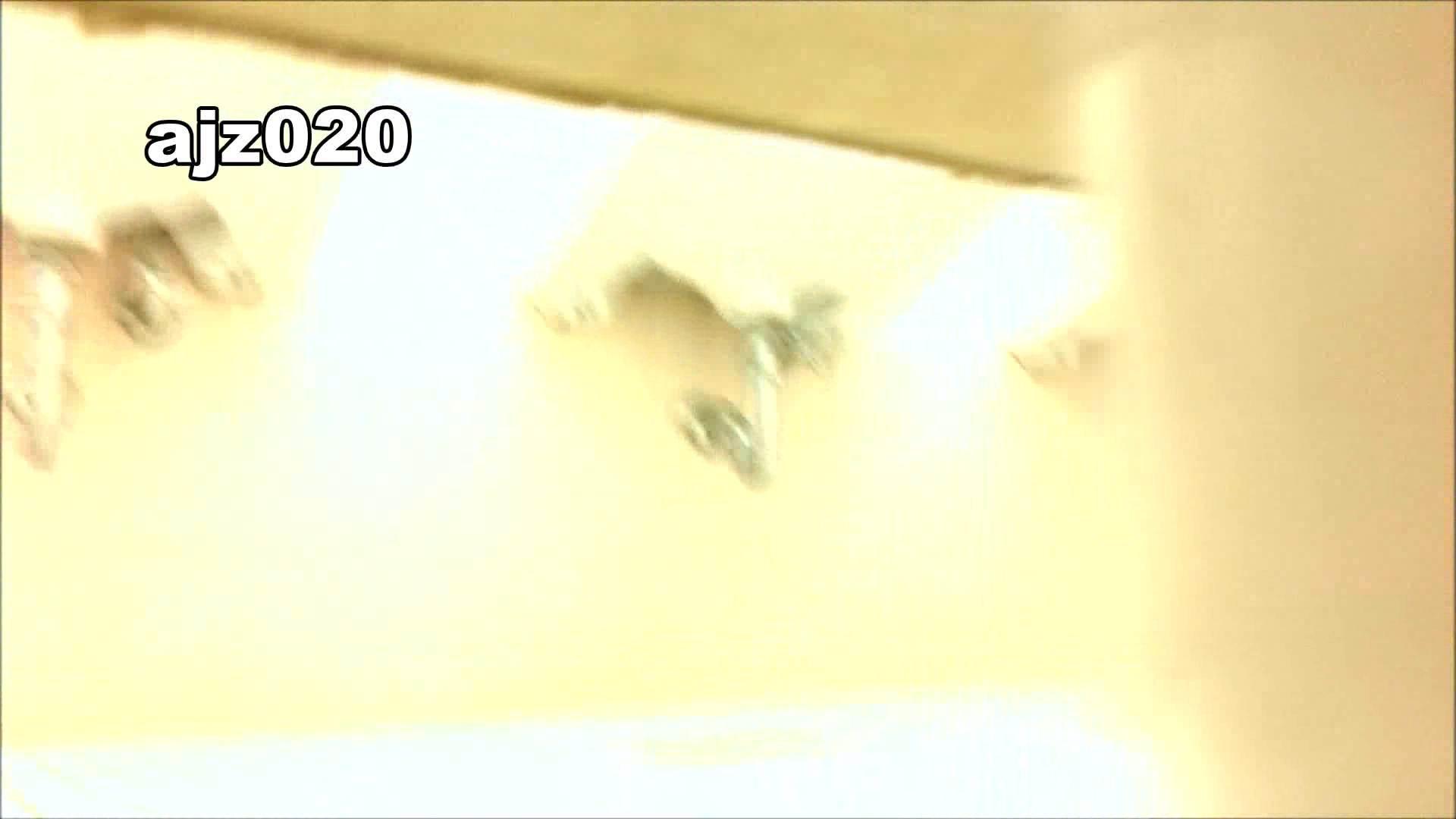 某有名大学女性洗面所 vol.20 和式トイレ おめこ無修正動画無料 79pic 43