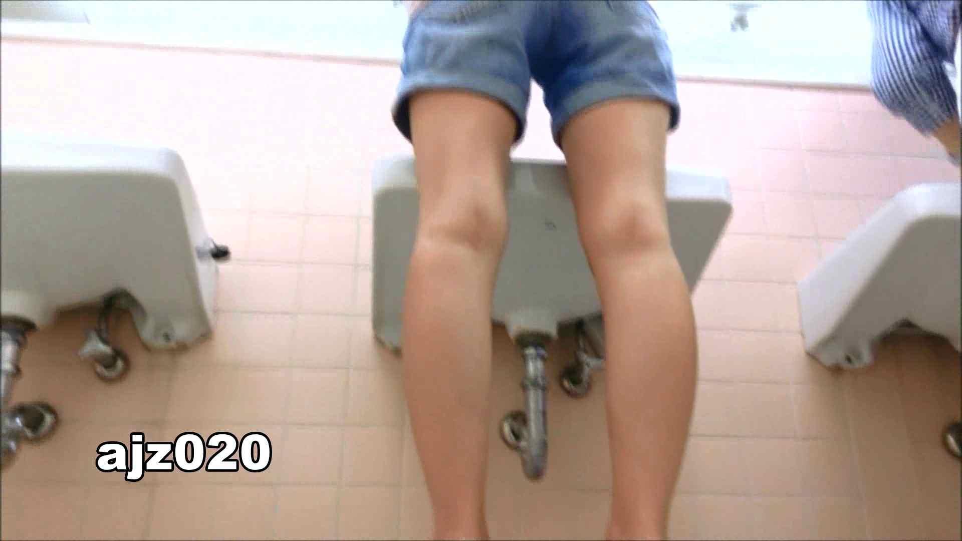 某有名大学女性洗面所 vol.20 和式トイレ おめこ無修正動画無料 79pic 63
