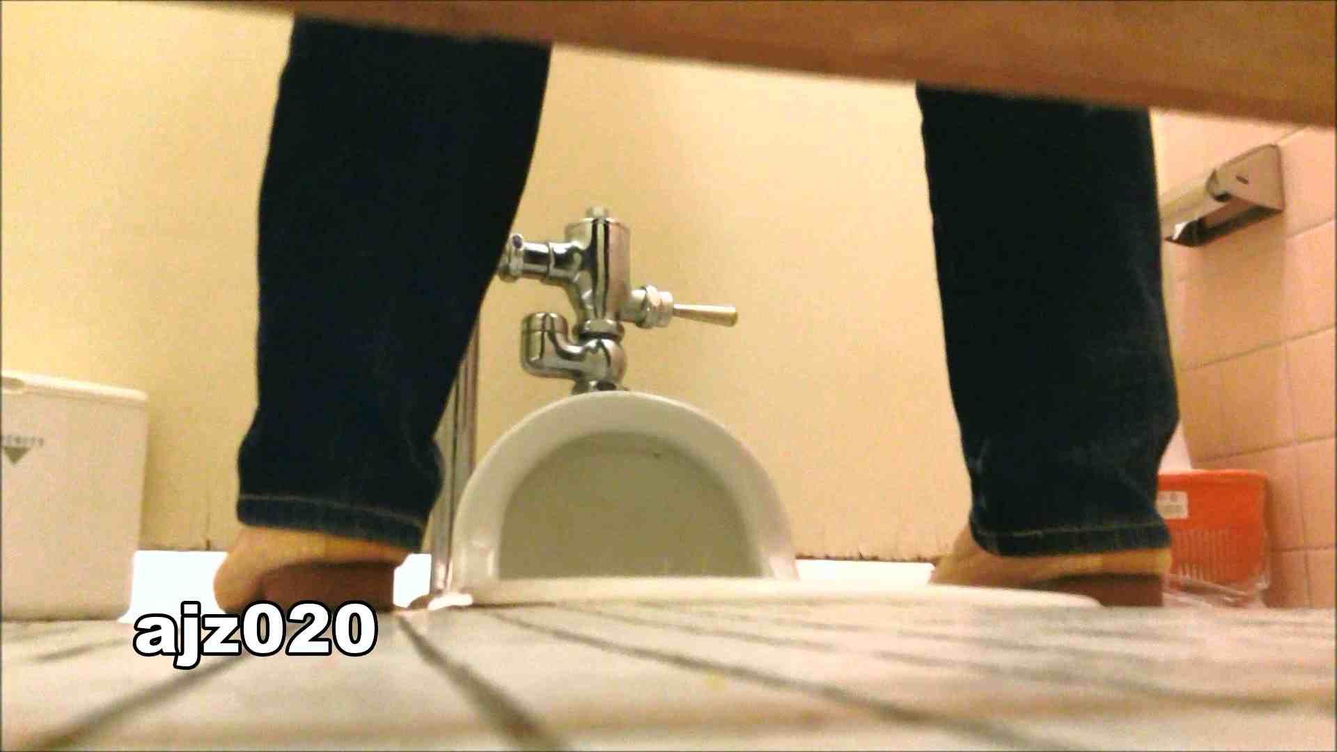 某有名大学女性洗面所 vol.20 和式トイレ おめこ無修正動画無料 79pic 67