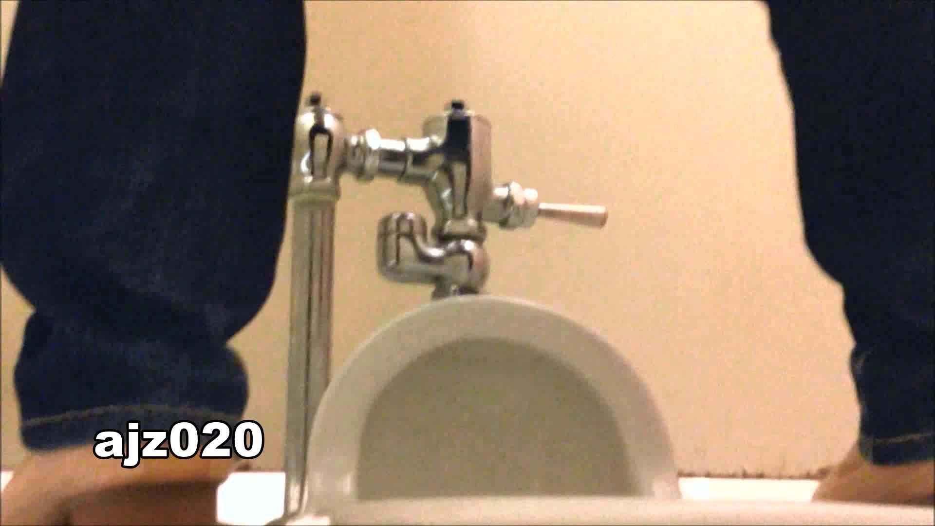 某有名大学女性洗面所 vol.20 洗面所突入  79pic 72