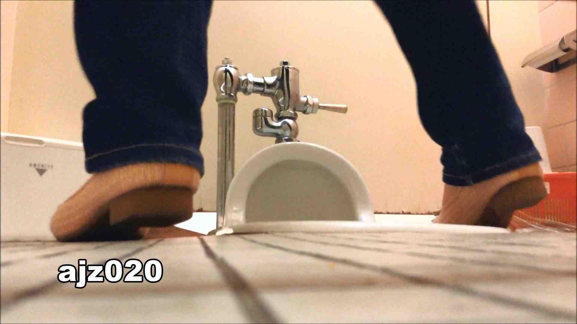某有名大学女性洗面所 vol.20 和式トイレ おめこ無修正動画無料 79pic 75