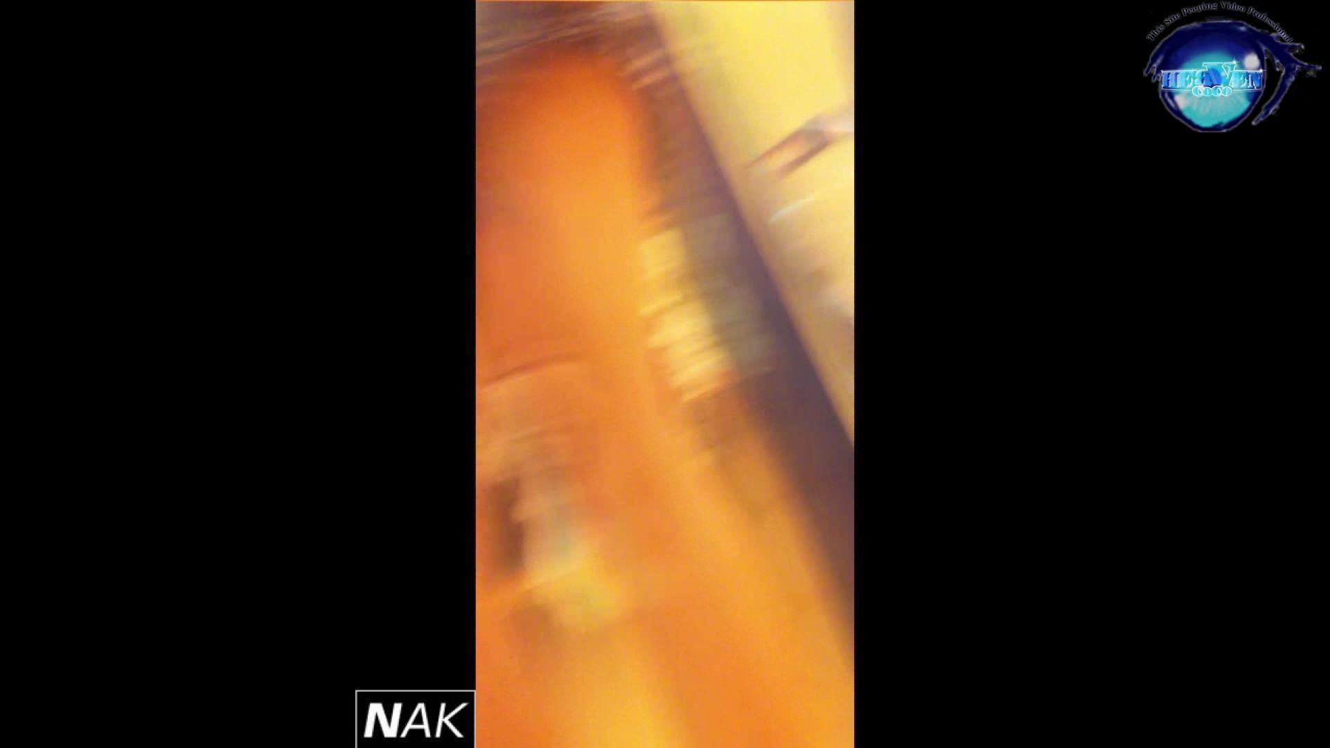 ハイビジョン盗撮!ショップ店員千人斬り!パンチラ編 vol.32 盗撮師作品 | チラ歓迎  88pic 73