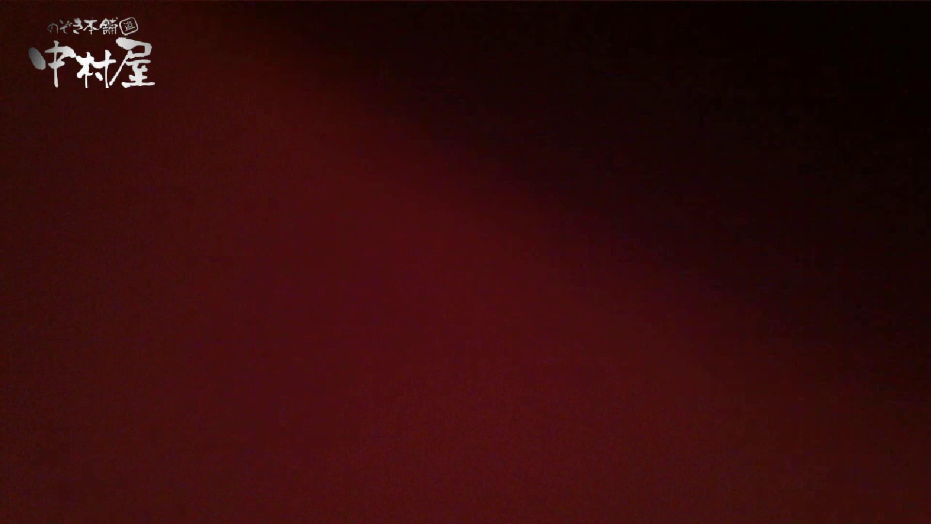 vol.46 可愛いカリスマ店員胸チラ&パンチラ モリマン! チラ歓迎 おまんこ動画流出 79pic 18