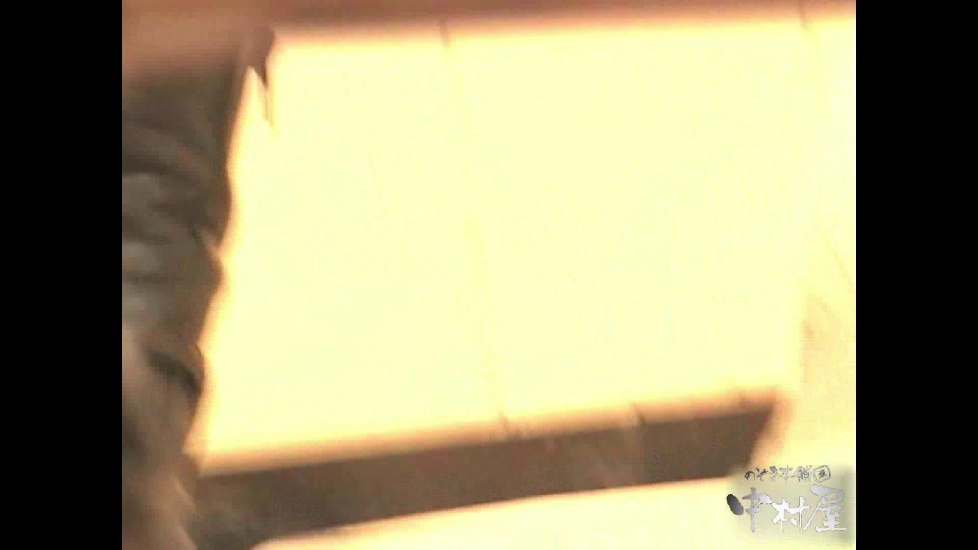 岩手県在住盗撮師盗撮記録vol.01 盗撮師作品 性交動画流出 98pic 11