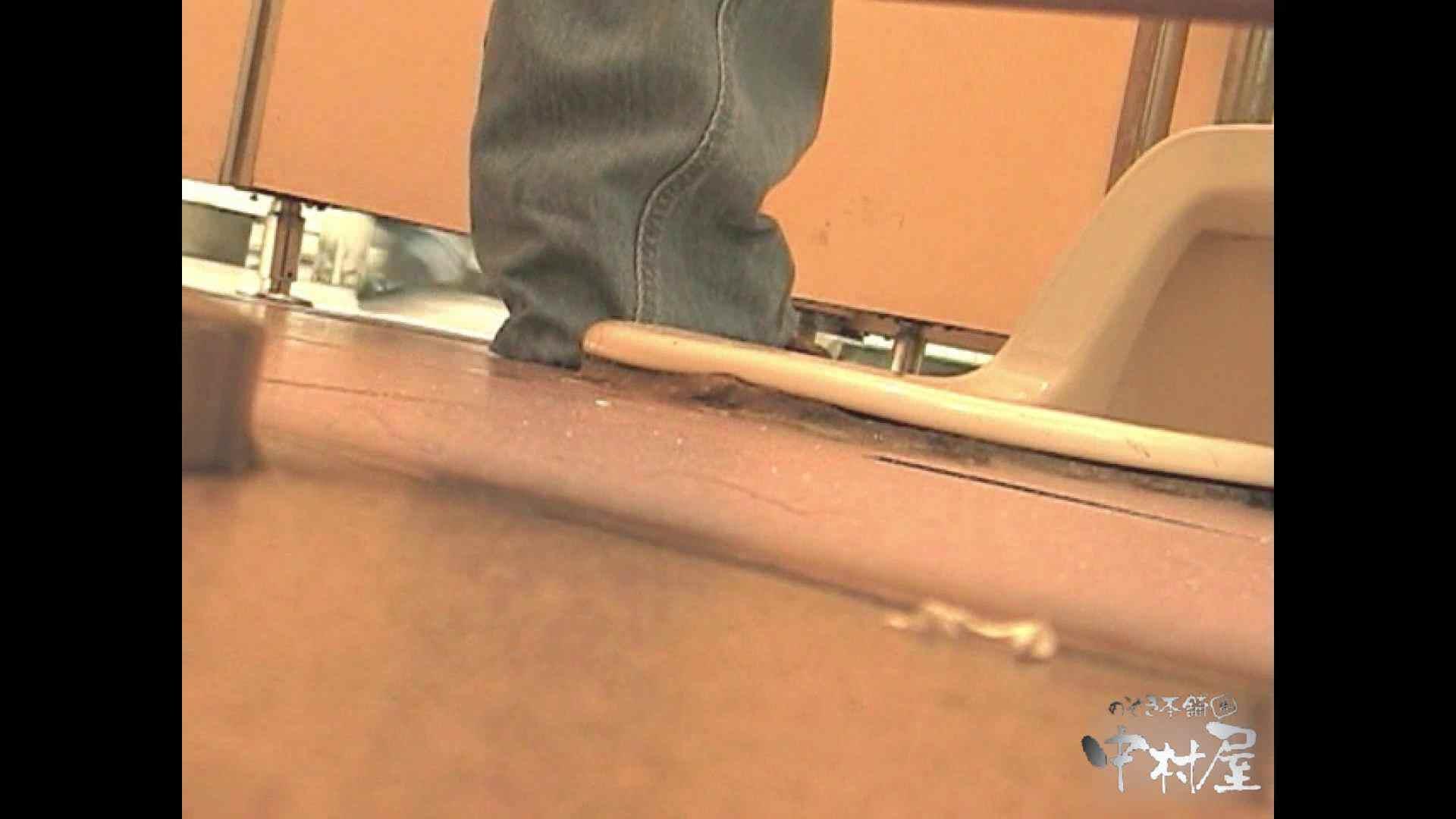 岩手県在住盗撮師盗撮記録vol.01 厠隠し撮り おまんこ動画流出 98pic 61