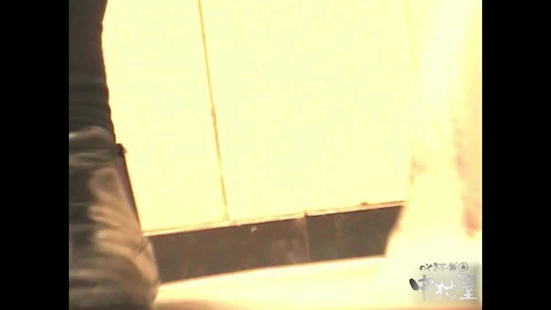 岩手県在住盗撮師盗撮記録vol.01 厠隠し撮り おまんこ動画流出 98pic 93