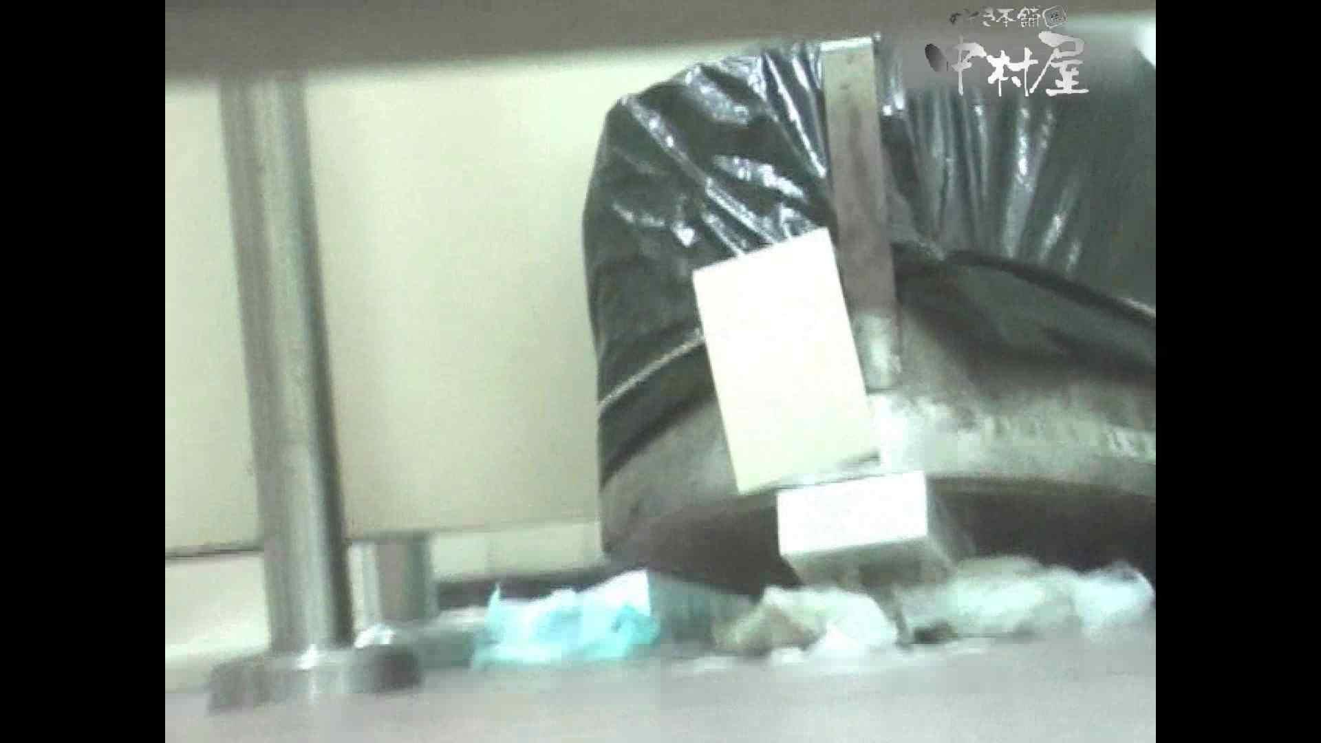 岩手県在住盗撮師盗撮記録vol.38 排泄隠し撮り | 厠隠し撮り  89pic 1