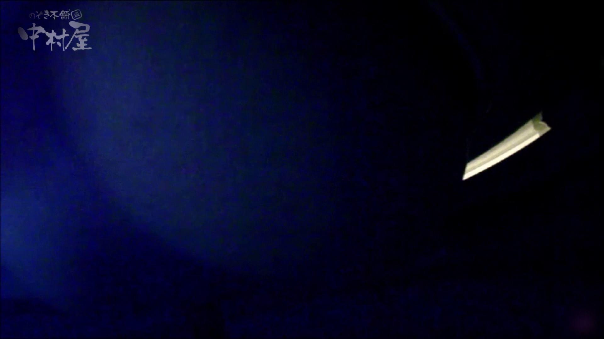 女子トイレ盗撮~某ファミレス編~vol.16 美しいOLの裸体  91pic 45
