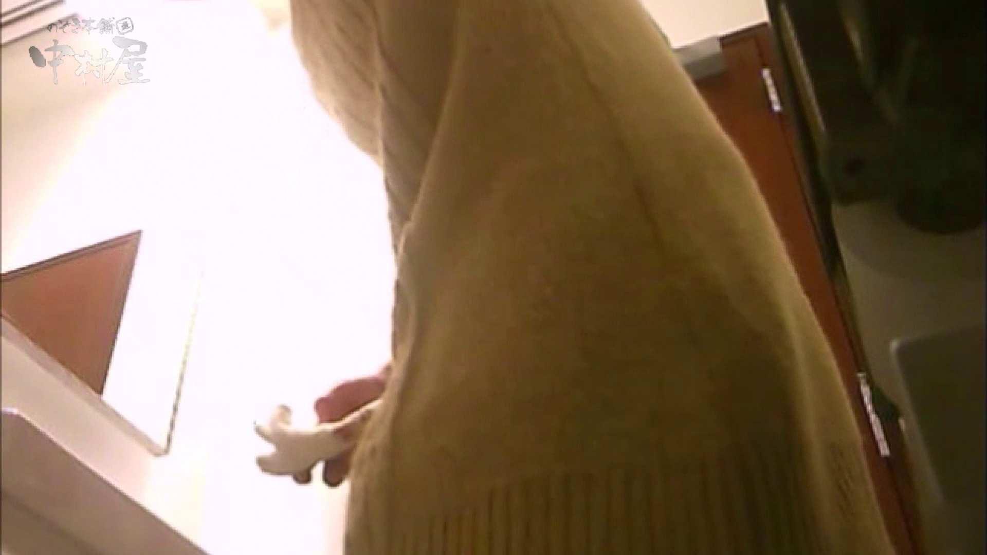 女子トイレ盗撮~某ファミレス編~vol.17 潜入突撃 濡れ場動画紹介 89pic 2