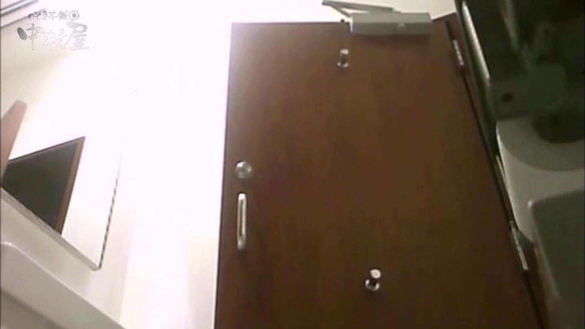 女子トイレ盗撮~某ファミレス編~vol.17 美しいOLの裸体  89pic 65