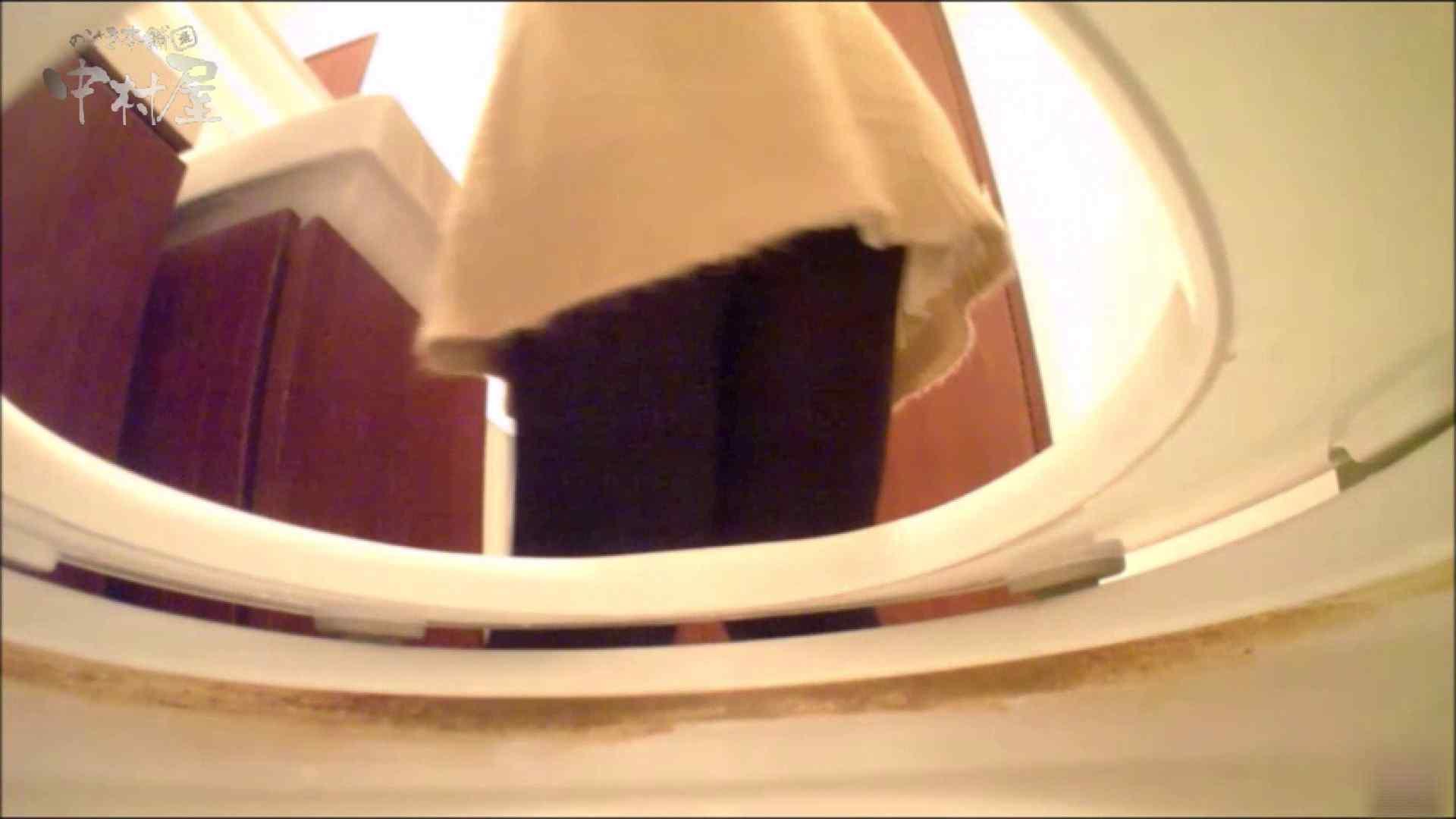 女子トイレ盗撮~某ファミレス編~vol.17 美しいOLの裸体 | 盗撮師作品  89pic 66