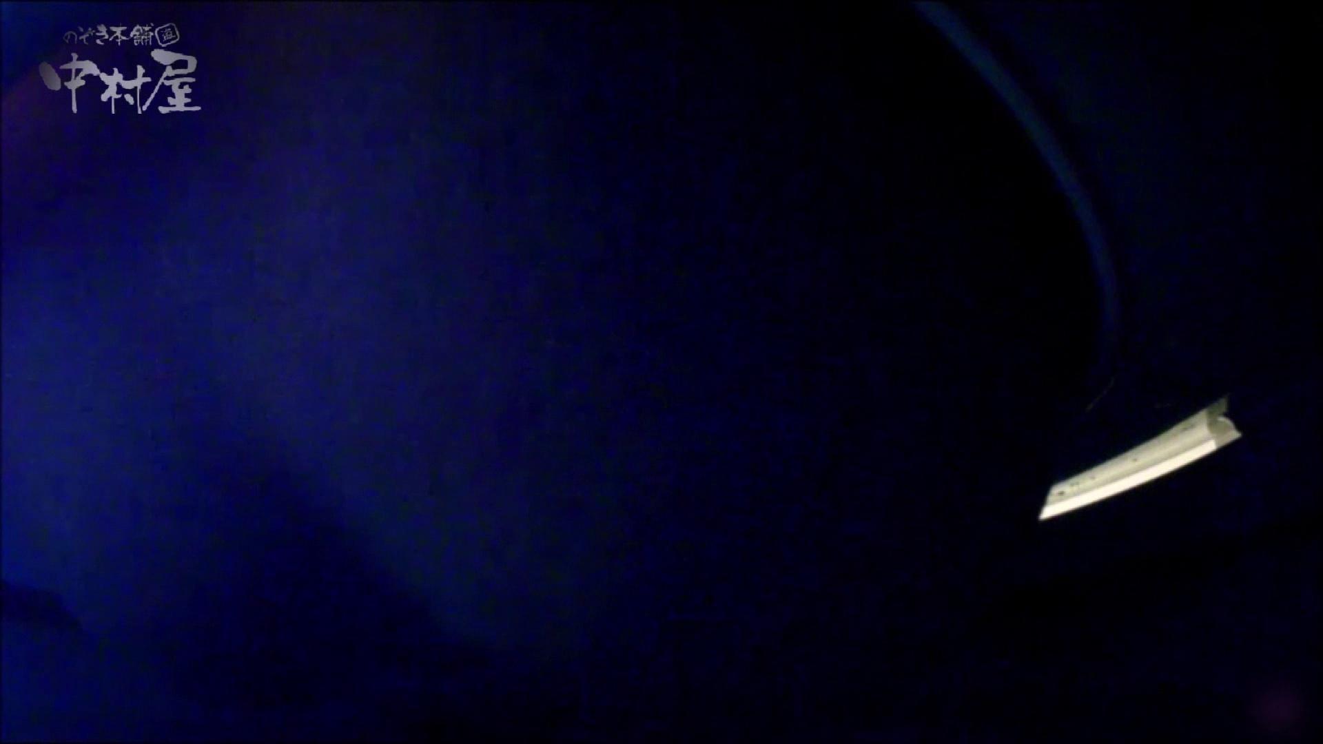 女子トイレ盗撮~某ファミレス編~vol.17 美しいOLの裸体 | 盗撮師作品  89pic 81