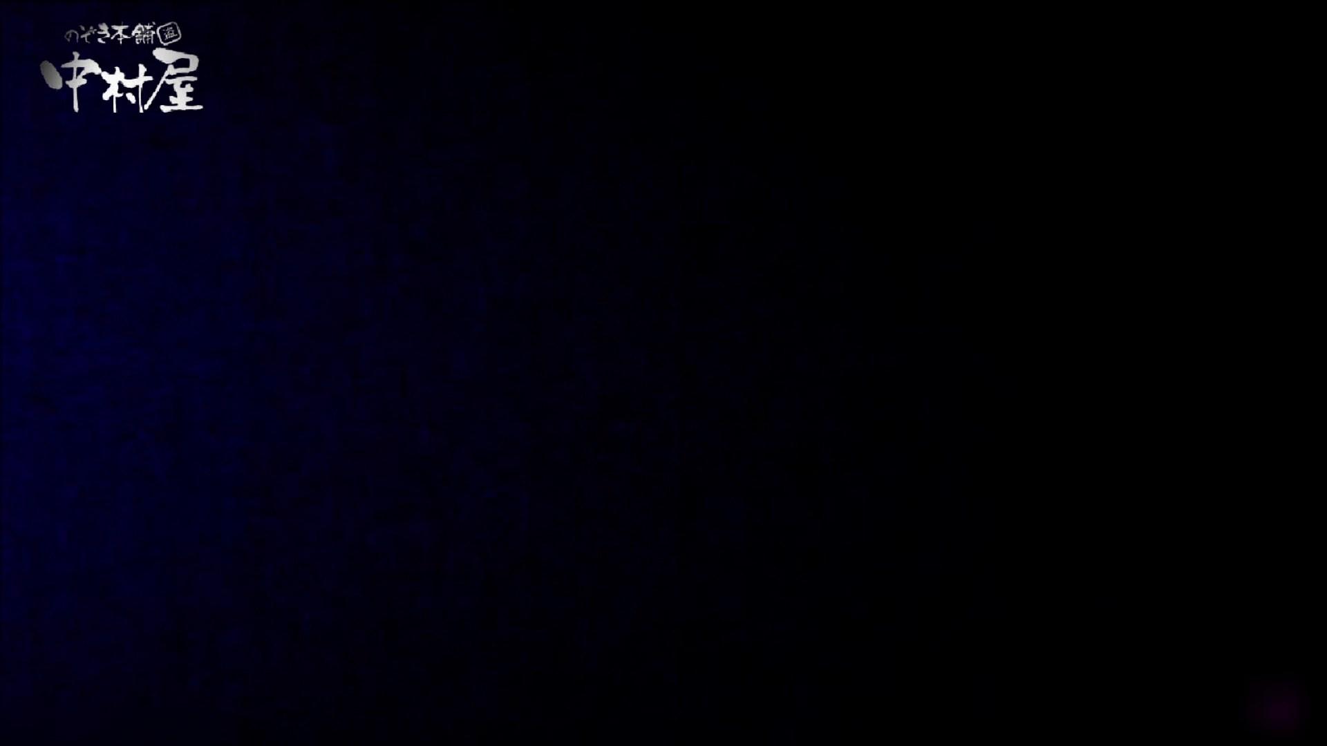 女子トイレ盗撮~某ファミレス編~vol.23 トイレ突入   美しいOLの裸体  96pic 6