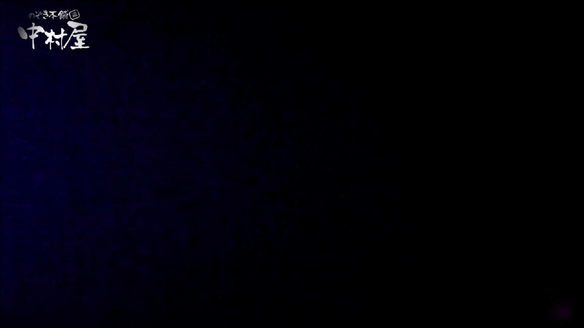 女子トイレ盗撮~某ファミレス編~vol.23 トイレ突入   美しいOLの裸体  96pic 11