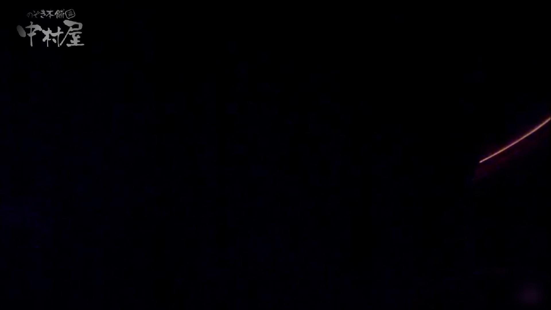 女子トイレ盗撮~某ファミレス編~vol.38 トイレ突入 | 美しいOLの裸体  103pic 81