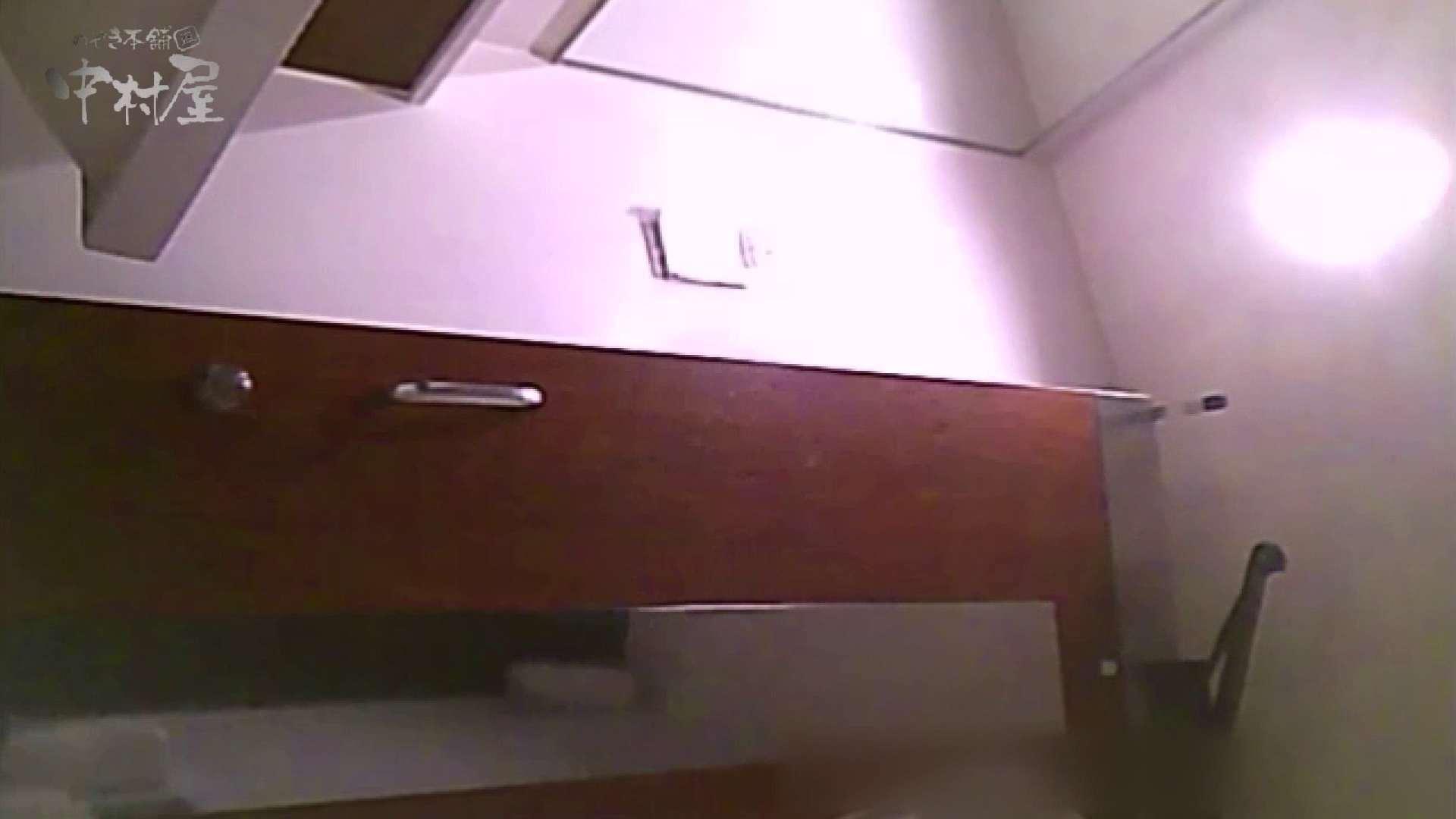 女子トイレ盗撮~某ファミレス編~vol.40 美しいOLの裸体  88pic 50