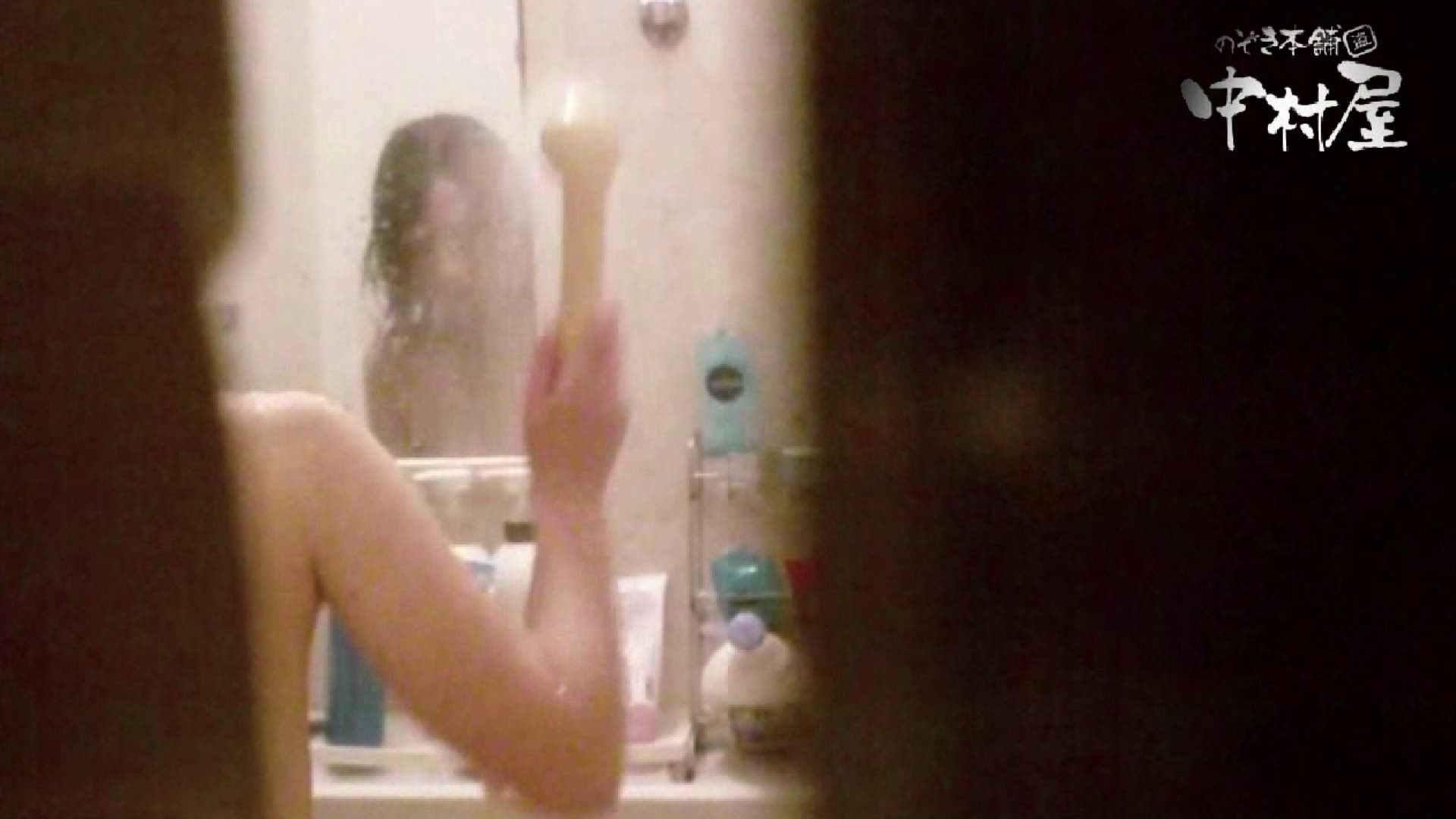 雅さんの独断と偏見で集めた動画集 民家Vol.3 美しいOLの裸体  87pic 28