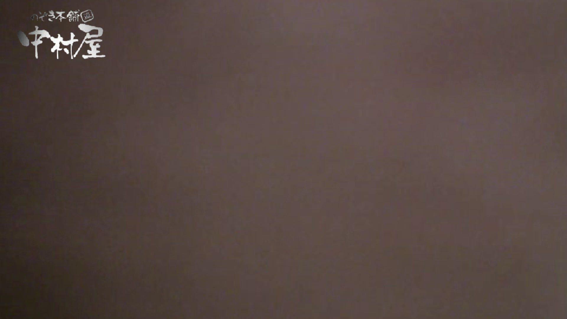 雅さんの独断と偏見で集めた動画集 民家Vol.8絶叫編 美しいOLの裸体   覗き  92pic 89