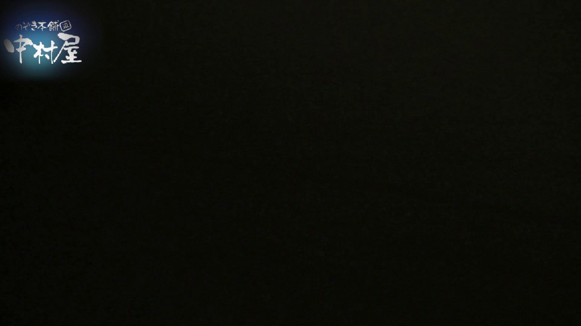 乙女集まる!ショッピングモール潜入撮vol.06 和式トイレ ヌード画像 86pic 59