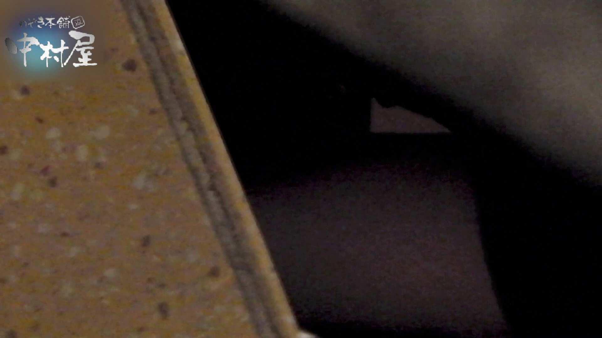 乙女集まる!ショッピングモール潜入撮vol.11 美しいOLの裸体 性交動画流出 78pic 68