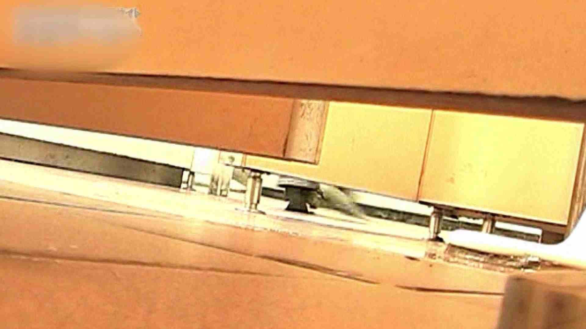 ロックハンドさんの盗撮記録File.54 黄金水  94pic 88