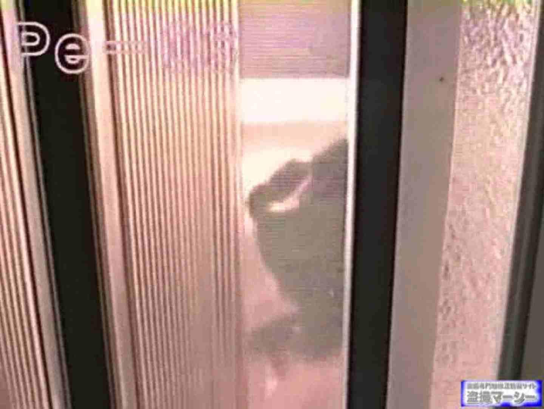 丸秘盗撮 隣の民家vol.6 美しいOLの裸体 性交動画流出 103pic 30