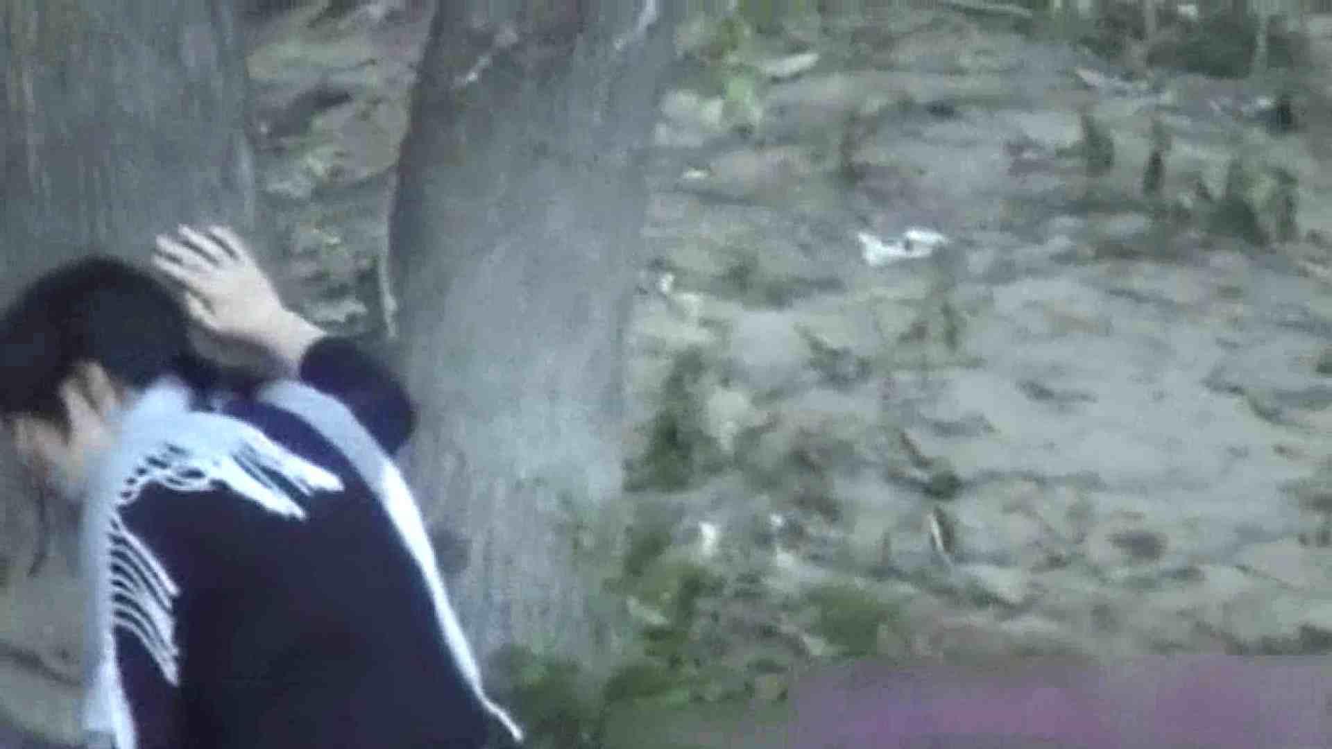 ハプニングッド!妖精達のオシッコ Vol.02 美しいOLの裸体 エロ画像 76pic 11