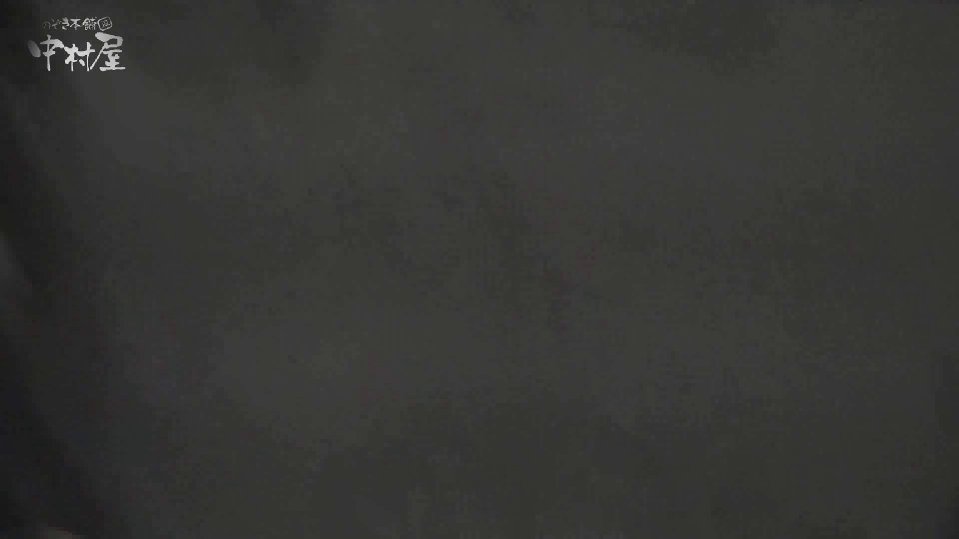 洗面所突入レポート!!vol.11 排泄隠し撮り セックス画像 83pic 38
