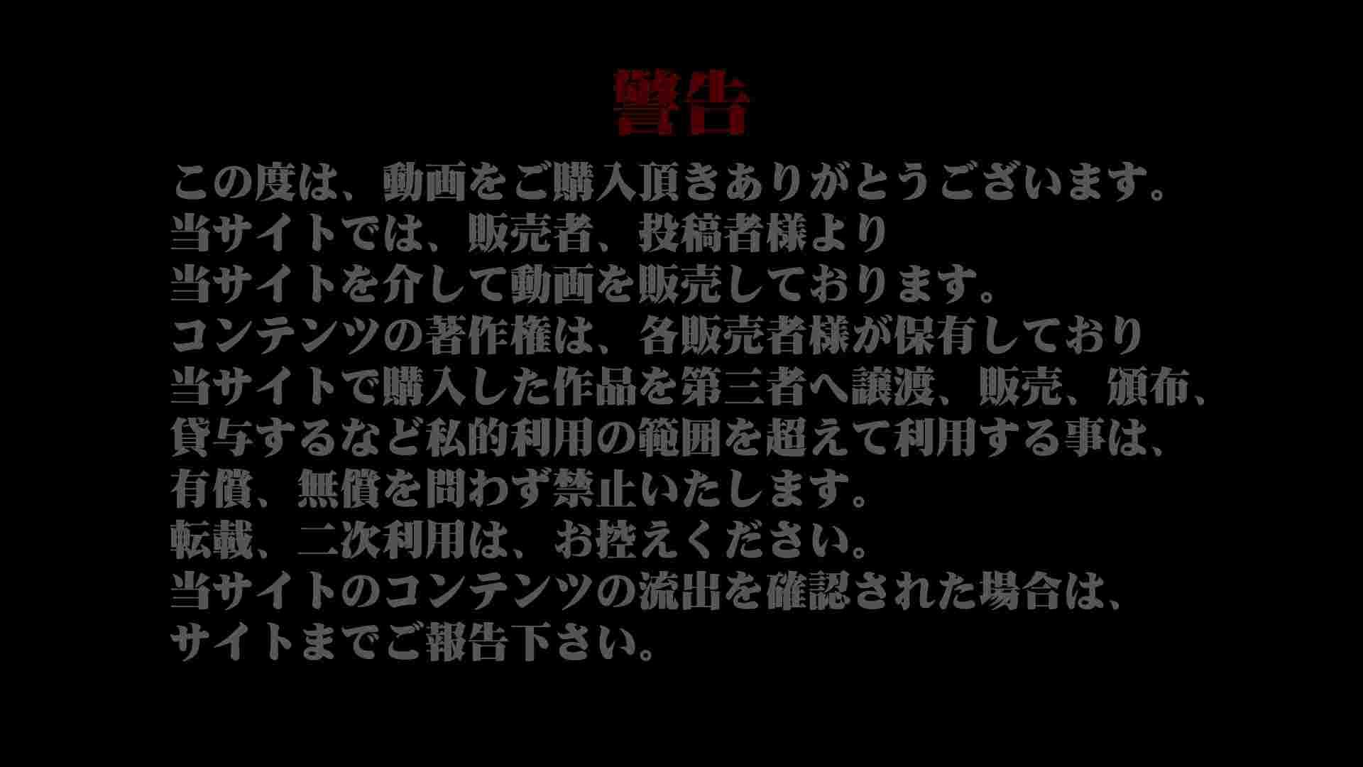 異業種交流会!!キャビンアテンダント編vol.23 便器 | うんこ実況  101pic 1