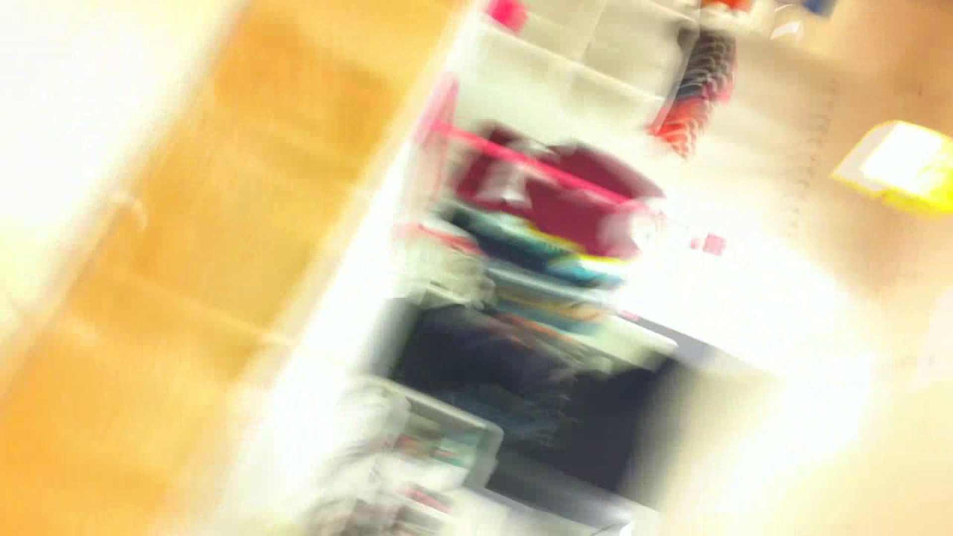 フルHD ショップ店員千人斬り! 大画面ノーカット完全版 vol.34 チラ歓迎 盗撮動画紹介 94pic 39
