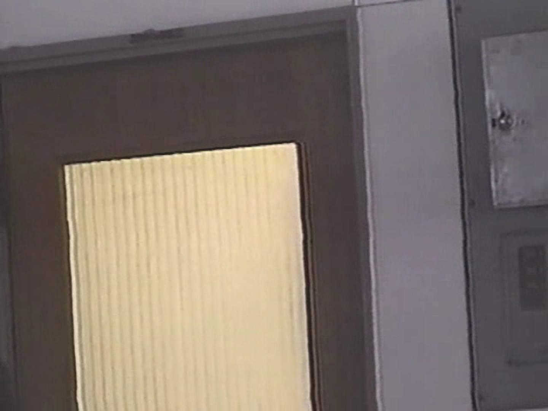 エッチ 熟女|性器鮮明!後方視点厠②|のぞき本舗 中村屋