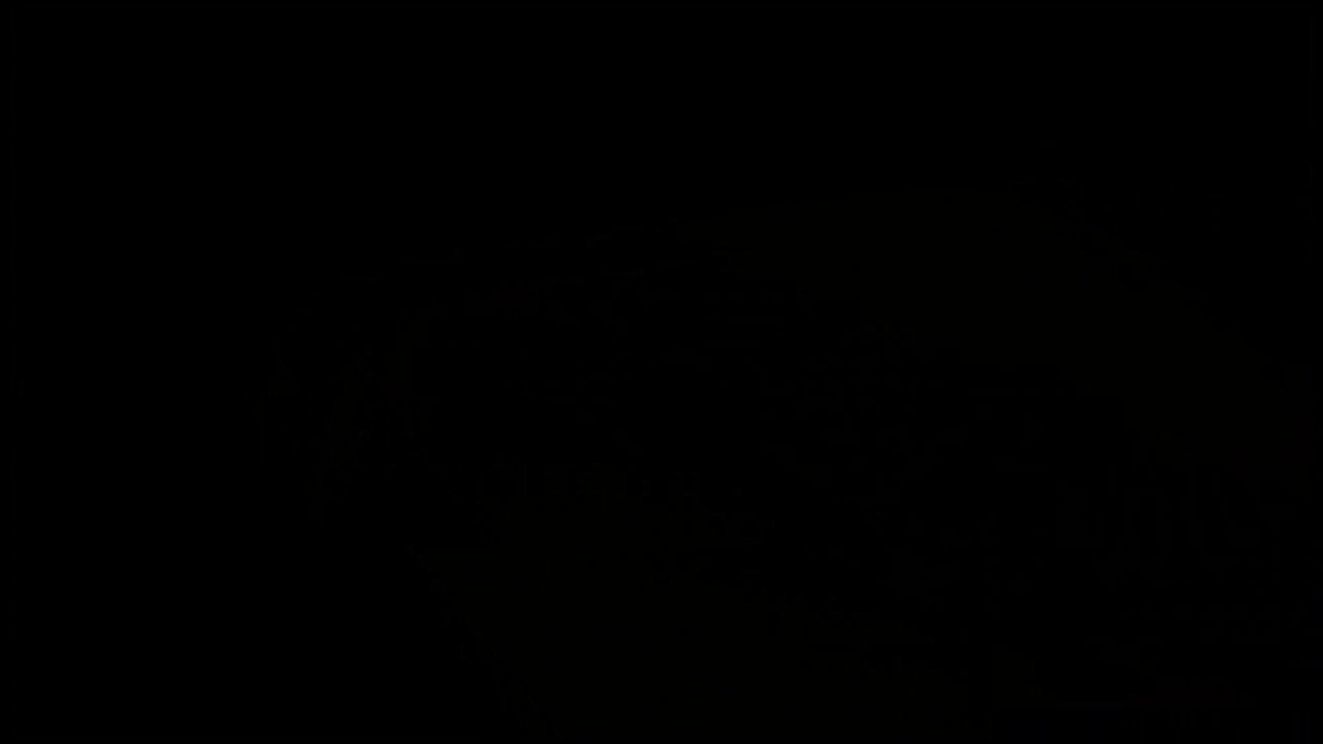和式にまたがる女たちを待ちうけるカメラの衝撃映像vol.01 和式トイレ 性交動画流出 106pic 65