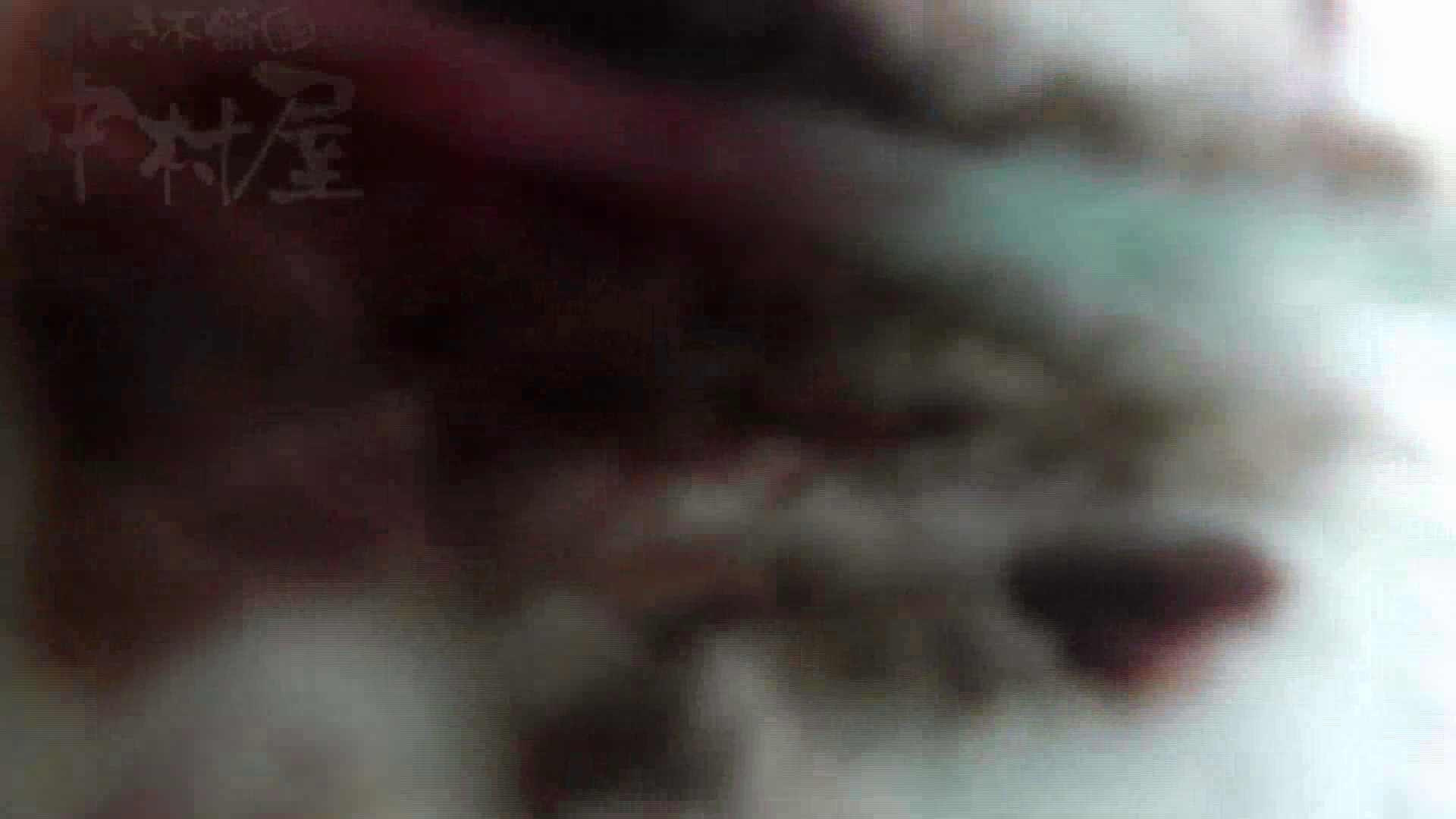美しい日本の未来 No.17 番外編 ※※※閲覧注意※※※ 高画質 われめAV動画紹介 99pic 11