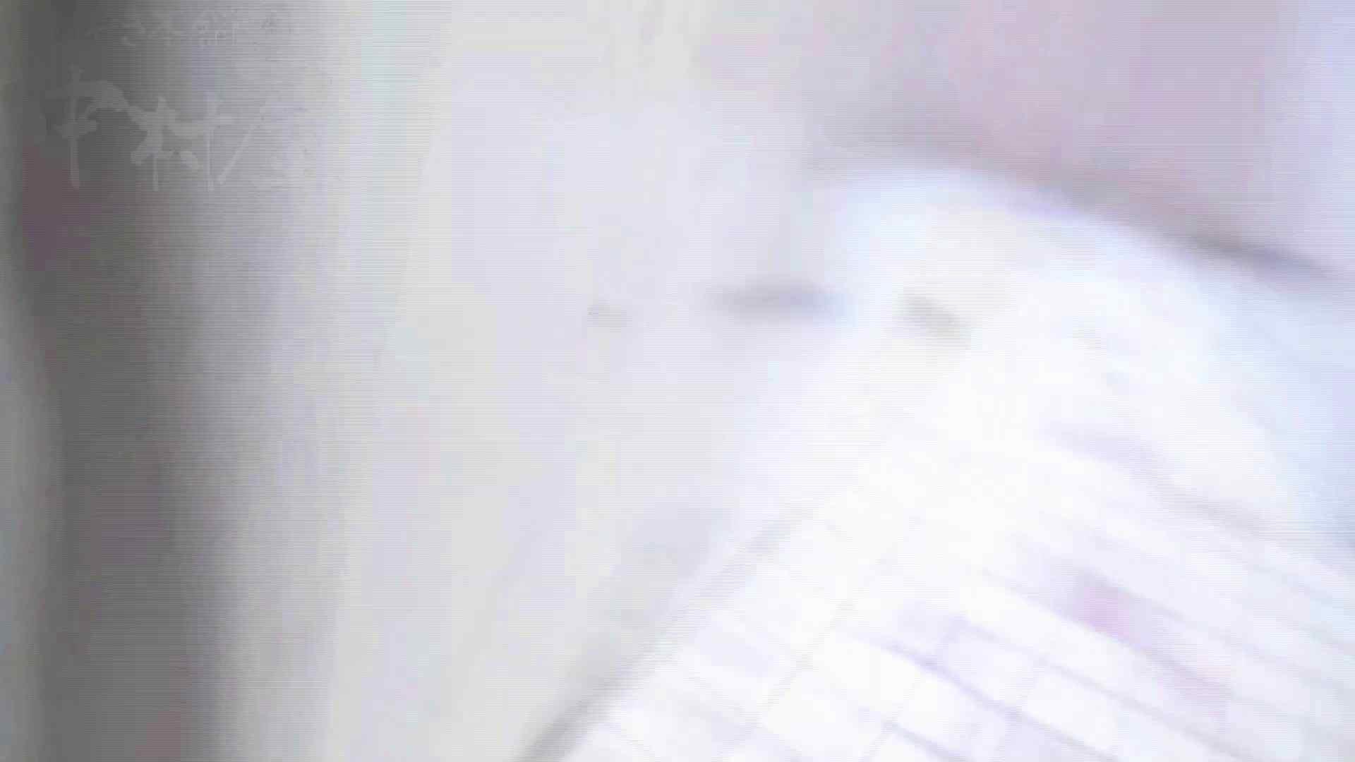 美しい日本の未来 No.17 番外編 ※※※閲覧注意※※※ 卑猥 セックス画像 99pic 61