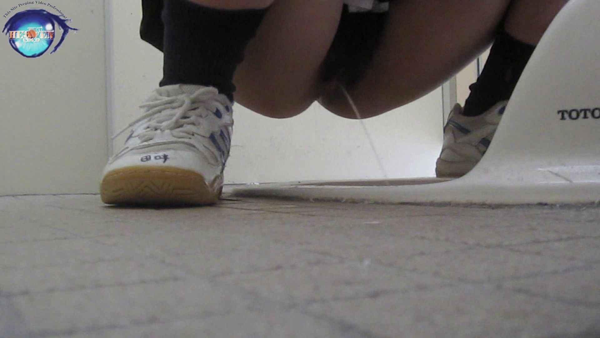 雅さんの独断と偏見で集めた動画集 厠編vol.01 美しいOLの裸体  107pic 76