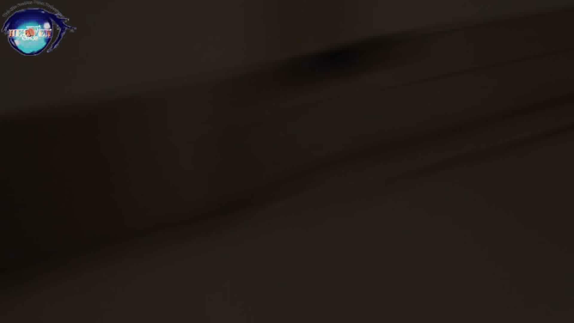 雅さんの独断と偏見で集めた動画集 厠編vol.08 厠隠し撮り  98pic 72