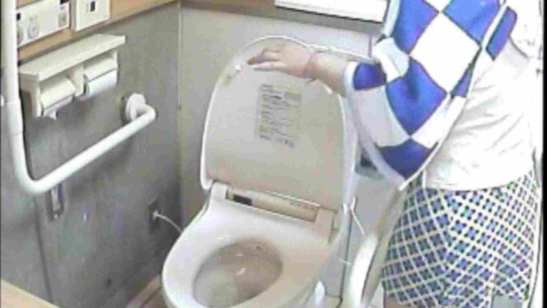 女子トイレ盗撮若い嬢編vol.01 厠隠し撮り AV無料 93pic 85