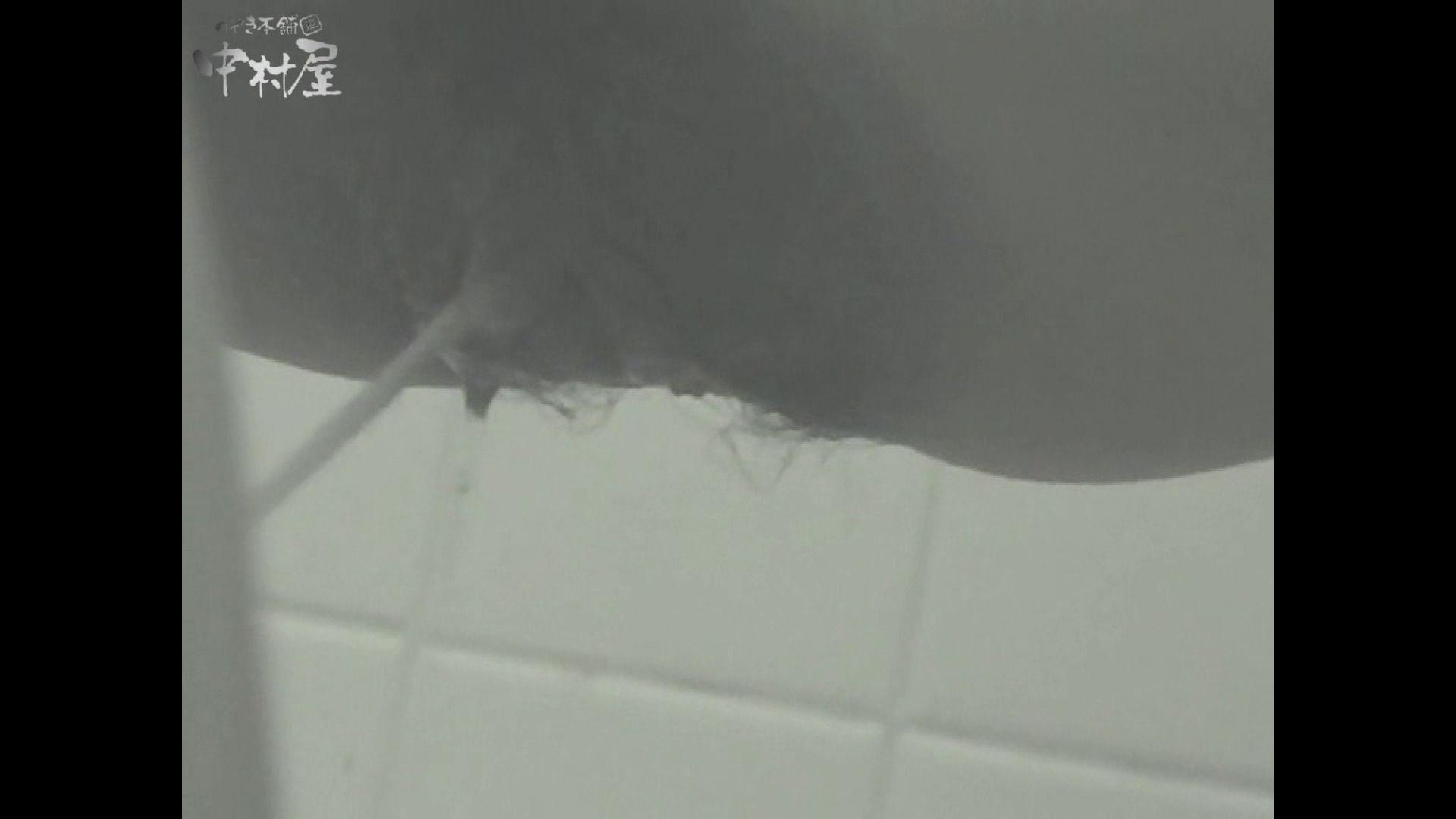 女子トイレ盗撮若い嬢編vol.13 トイレ突入 盗撮動画紹介 72pic 19