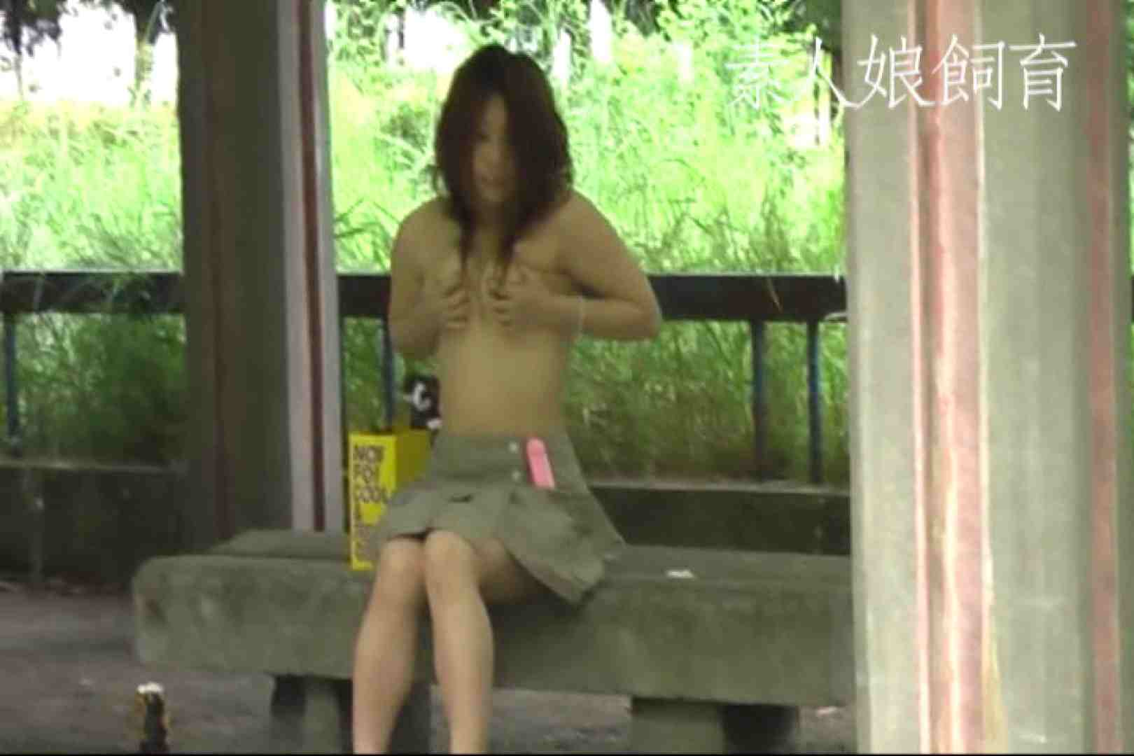 素人嬢飼育~お前の餌は他人棒~野外露出 トイレ突入 オメコ動画キャプチャ 106pic 52
