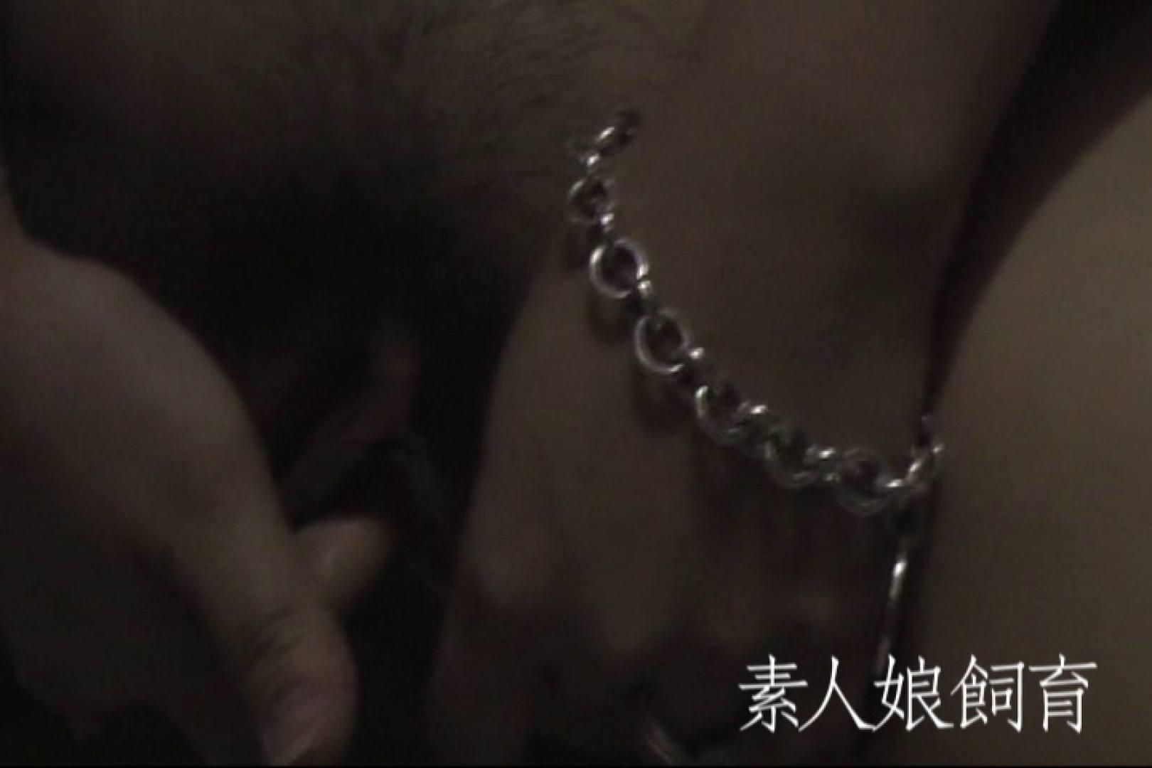素人嬢飼育~お前の餌は他人棒~野外全裸オナニ- 素人丸裸 オマンコ無修正動画無料 85pic 42