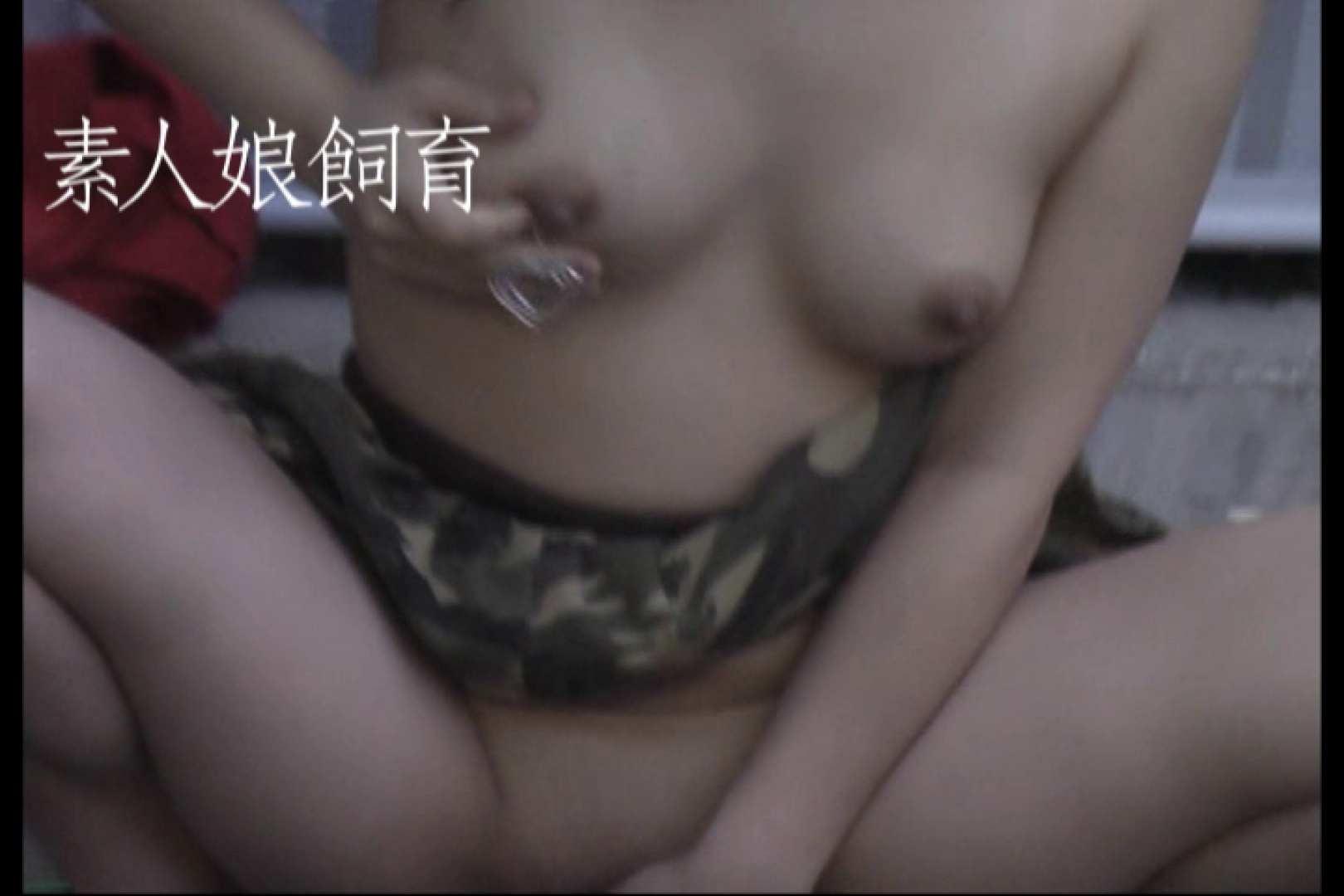 素人嬢飼育~お前の餌は他人棒~6月17日野外露出 素人丸裸 | 他人棒  74pic 13