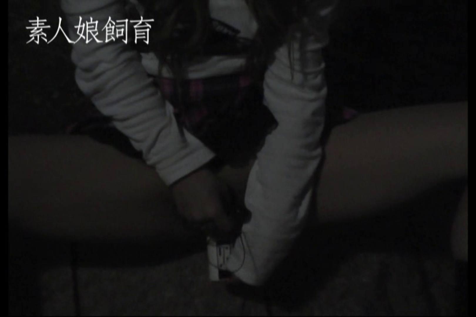 素人娘飼育~お前の餌は他人棒~公園でバイブとお漏らし 野外 セックス画像 71pic 3