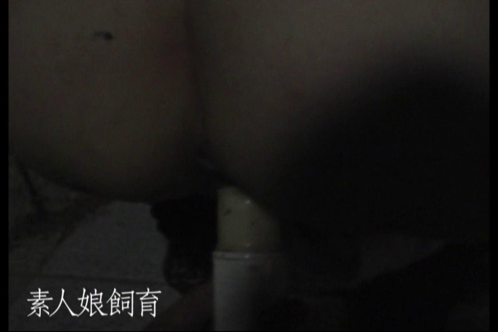 素人娘飼育~お前の餌は他人棒~公園でバイブとお漏らし 野外 セックス画像 71pic 23