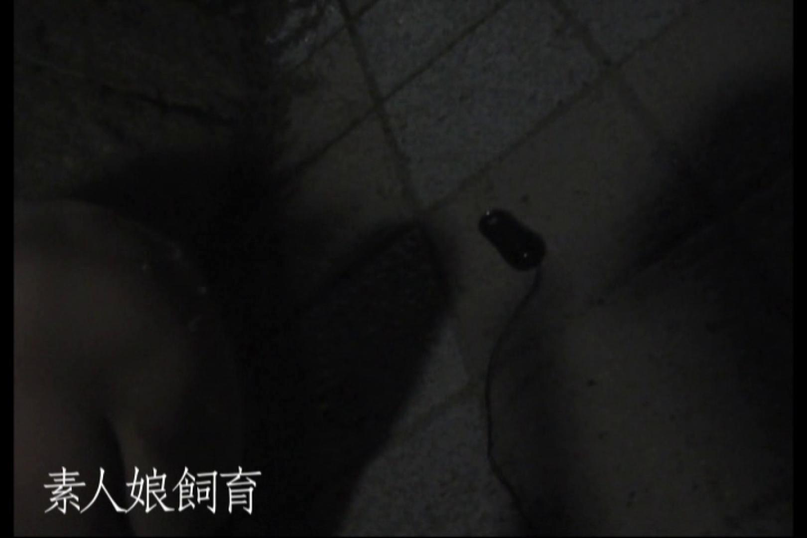 素人娘飼育~お前の餌は他人棒~公園でバイブとお漏らし 素人丸裸 のぞき動画画像 71pic 32