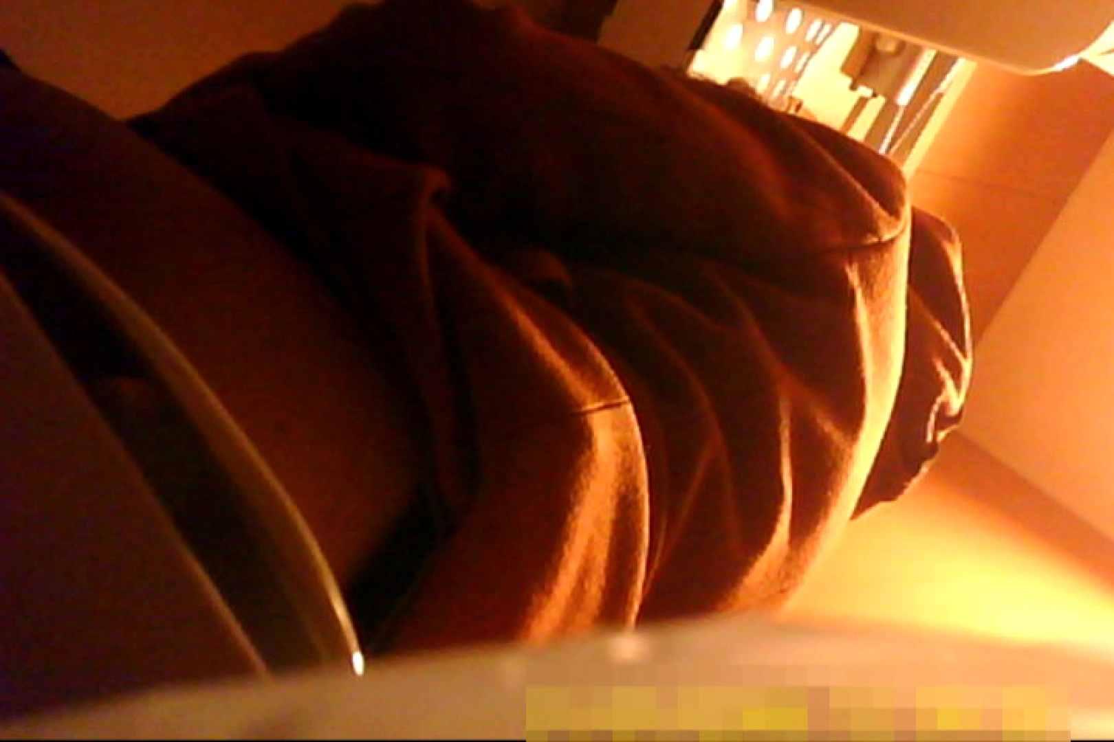 魅惑の化粧室~禁断のプライベート空間~vol.6 チラ歓迎 ワレメ無修正動画無料 75pic 18